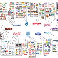 Apenas 10 empresas controlam quase toda rede de produção de alimentos no mundo