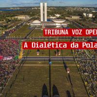 TDI: A Dialética da Polarização